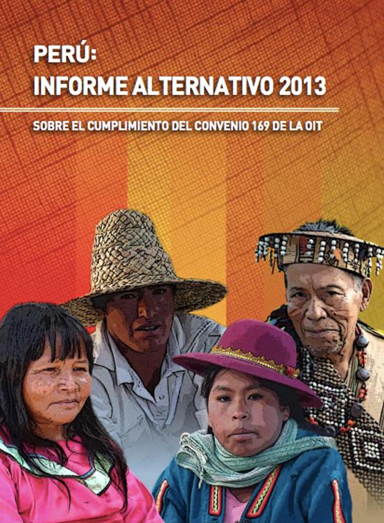 informe_alternativo_2013