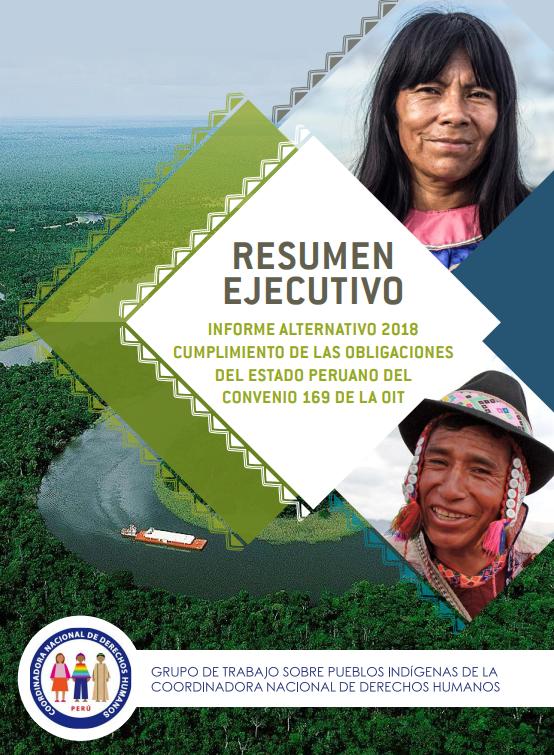 resumen_informe_alternativo_2018