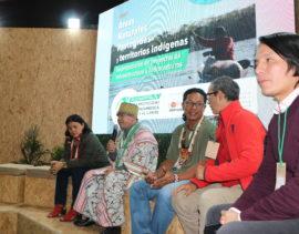Pueblos indígenas hacen llamado a la protección de los ríos amazónicos